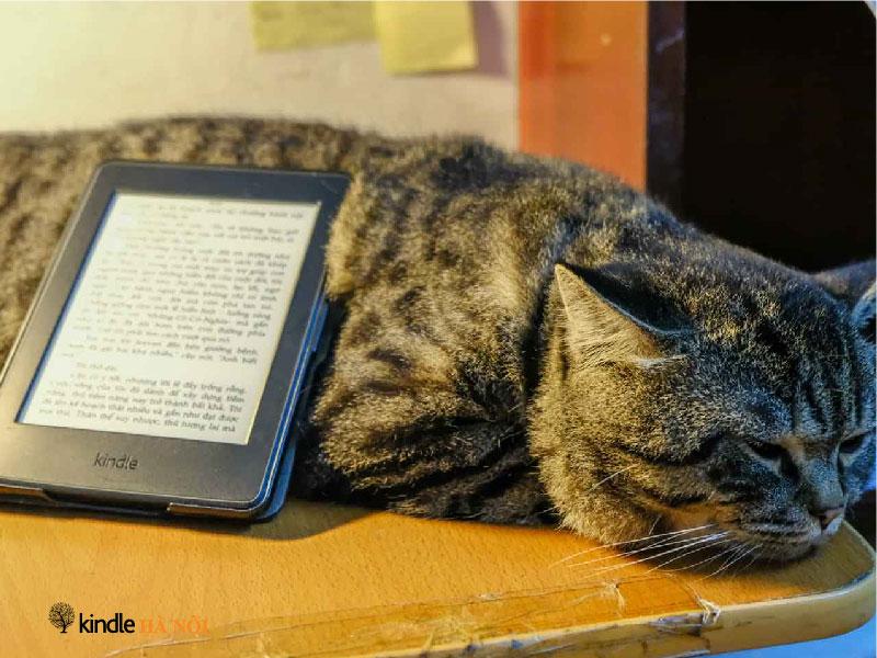 Hướng dẫn cài từ điển cho Kindle – Video thao tác